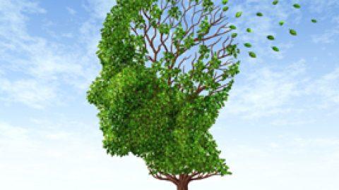 Gestalt y Neurosis